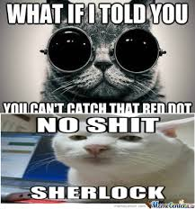 Morpheus Cat Meme - rmx morpheus cat by moody meme center