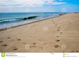 footprints on a cape cod beach royalty free stock photo image