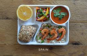 photos of school lunches from around the world will make american