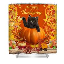 happy thanksgiving shower curtain for sale by glenn holbrook