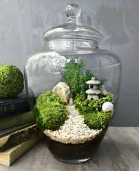 bring nature indoors with this micro garden landscape it features