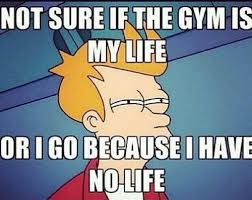 Gym Life Meme - not sure if the gym is my life or i got because i have no life