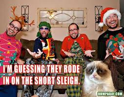 best 25 grumpy cat christmas meme ideas on pinterest