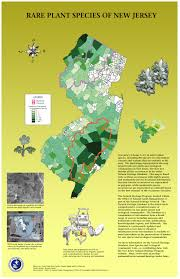 new jersey native plants bureau of gis
