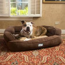 extra extra large dog beds wayfair