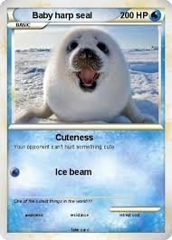 Baby Seal Meme - funny harp seal memes harp best of the funny meme