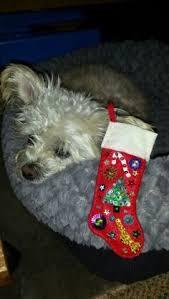 vintage 1940s handmade christmas stocking decorated felt grandpa
