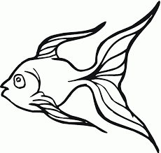 fish outline coloring page goldfish clipart bowl drawing pencil and in color goldfish