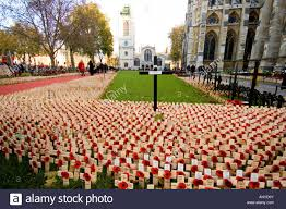 field of poppies outside westminster abbey on remembrance day