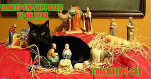 Merry Christmas Cat Meme - meowy catmas 3 i wanna wish you a merry christmas from the