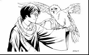 spectacular harry potter owl hedwig coloring page with harry