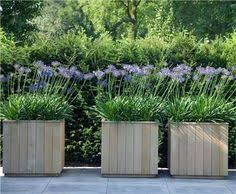 Concrete Planter Boxes by Boxwoods Are Perfect For Pots U0026 Urns Planters Squares And Gardens