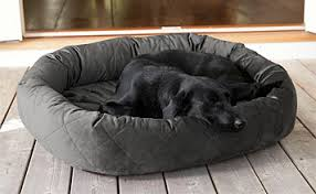 tempur pedic bed cover orvis tempur pedic wraparound dog bed cover orvis tempur pedic