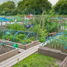 layout of small vegetable garden awesome vegetable garden design
