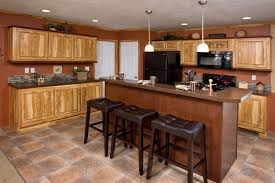 single wide mobile home interior 50 awesome single wide mobile homes floor plans house floor