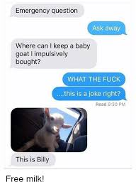 Billy Goat Meme - 25 best memes about baby goat baby goat memes