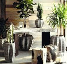 roost home decor roost primitivo hurricane holders terrarium home decor pinterest
