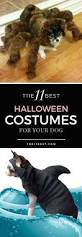 103 best halloween images on pinterest halloween ideas
