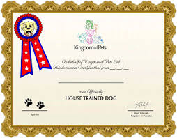 Comfort Dog Certificate The Ultimate House Training Guide