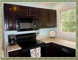 Refurbishing Kitchen Cabinets Furniture Image Of Refinish Kitchen Cabinets Image Refinishing