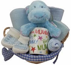 hello gift basket hello hippo new and baby boy gift basket