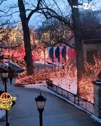 when does the lights at the toledo zoo start lights before christmas www toledozoo org lights before christmas