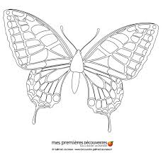 butterfly coloring pages drawing kids kids crafts