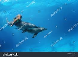 little swimming pair dolphins underwater stock photo