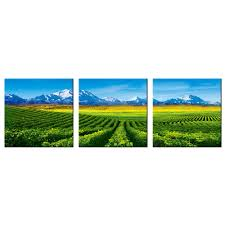 Vineyard Home Decor by Compare Prices On Vineyard Wall Art Online Shopping Buy Low Price