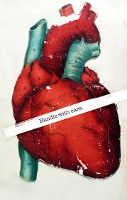 115 best hearts images on pinterest anatomical heart human