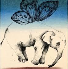 top 10 elephant designs elephant design elephant