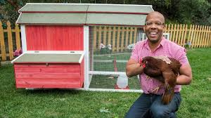 how to make a backyard chicken coop youtube