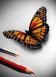 collection of monarch design as dwindling monarch butterflies