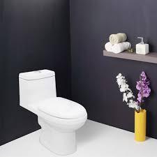 toilet seats bathroom toilets water closets hindwarehomes