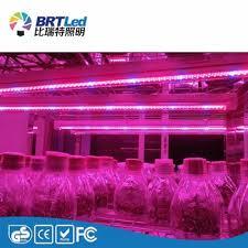 12v dc led grow lights led grow light 12v dc blue red color buy led grow light 12v
