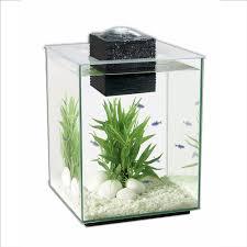 amazon com fluval chi ii aquarium set 5 gallon pet supplies