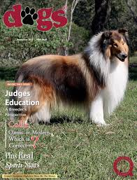 belgian shepherd qld dogs queensland the queensland dog world issue 9 september