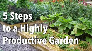 vegetable gardening how to plan a highly productive garden youtube