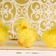 Kelowna Home Decor Stores Real Deals On Home Decor 36 Photos Home Decor 1075 Mccurdy