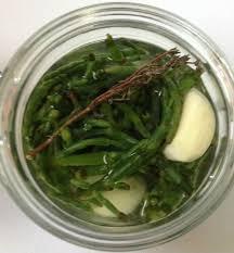cuisiner la salicorne salicorne au vinaigre