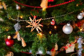 christmas decoration free images branch celebration holiday fir christmas tree