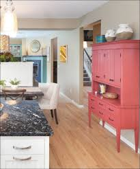 Refinishing Wood Cabinets Kitchen Kitchen Best Paint For Wood Cabinets Refinishing Kitchen