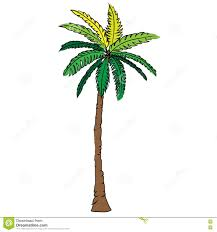 coconut tree beast icon design illustration nature seaside