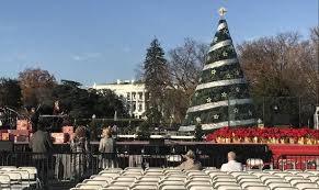 nbc tree lighting 2017 get into the spirit with these holiday events dc on heels