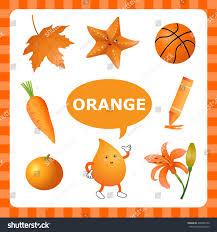 Orange Color learn color orange things that orange stock vector 298400126