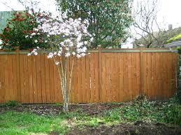 Backyard Fence Ideas Pictures Backyard Fence Ideas Colour For Dogs Lawratchet Com