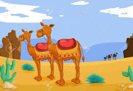 illustration of a group of camels in desert royalty free cliparts