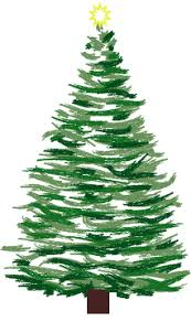 swfl christmas trees serving sarasota and venice florida