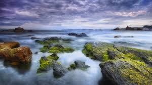 rocky shore wallpapers beach moss covered rocky shore horizon clouds ship sea rocks