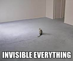 Invisible Cat Meme - invisible bike know your meme